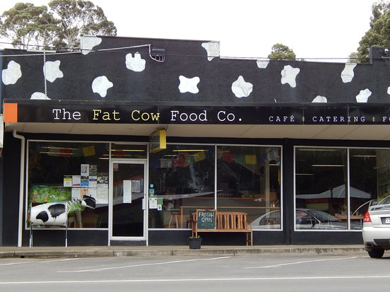 THE FAT COW Food Co. - Broome Tourism