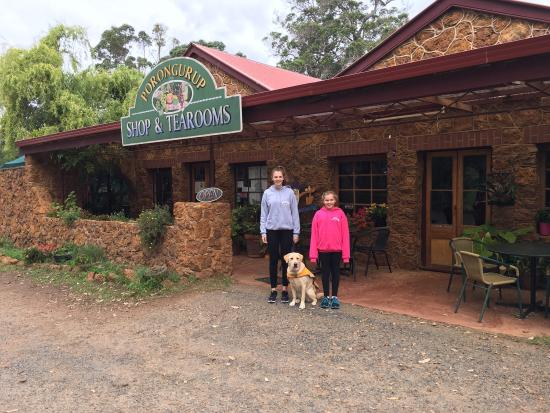 Porongurup Tea Rooms - Broome Tourism