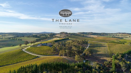 The Lane Vineyard - Broome Tourism