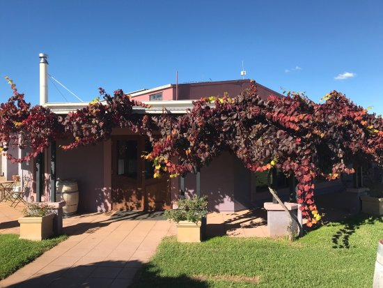 Jester Hill Wines - Broome Tourism