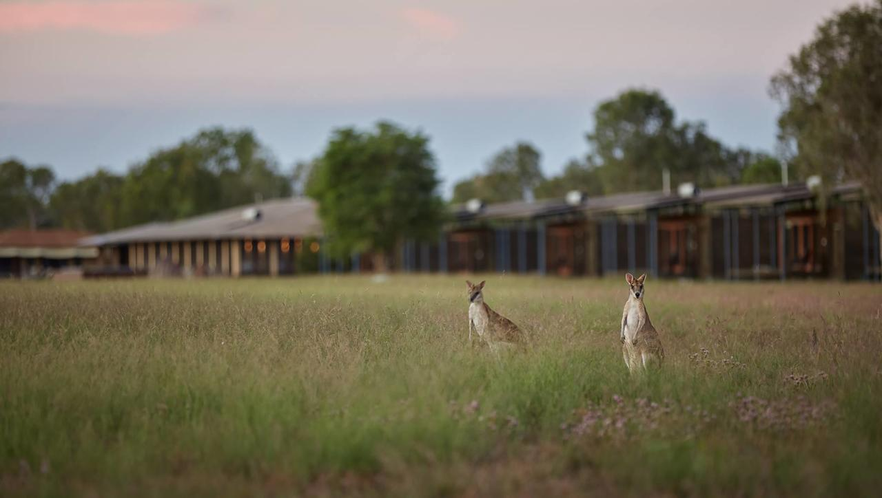 Wildman Wilderness Lodge - Broome Tourism