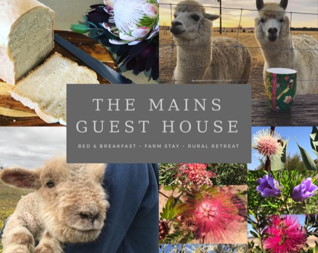 The Mains Guest House - Broome Tourism